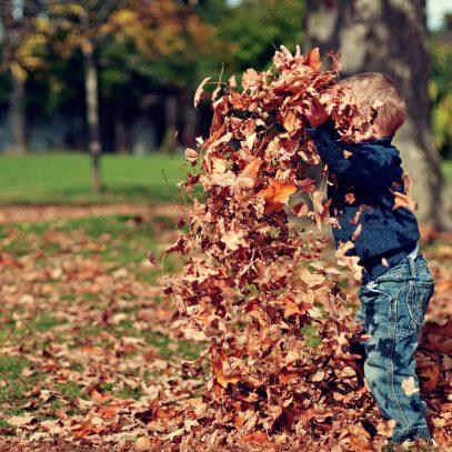 De mooie kanten van de herfst